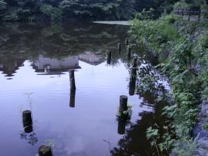 蘇原の持田池