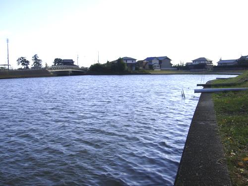 大江川 バス釣り