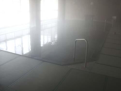 岐阜の温泉、下呂温泉小川屋の畳風呂