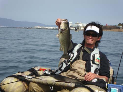 琵琶湖木浜のブラックバス
