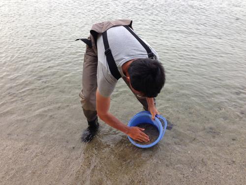琵琶湖の砂
