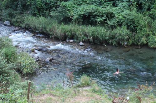 郡上の渓流