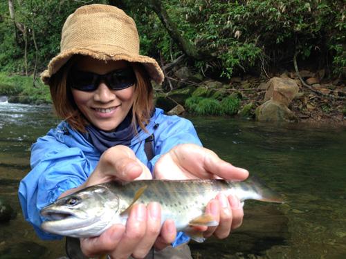 渓流でアマゴ釣り