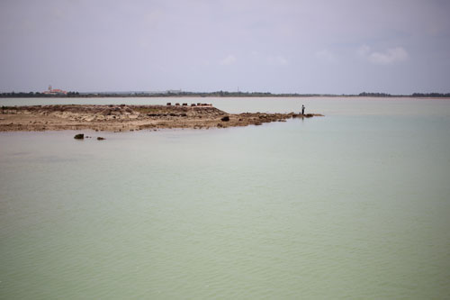 宮古島で釣り