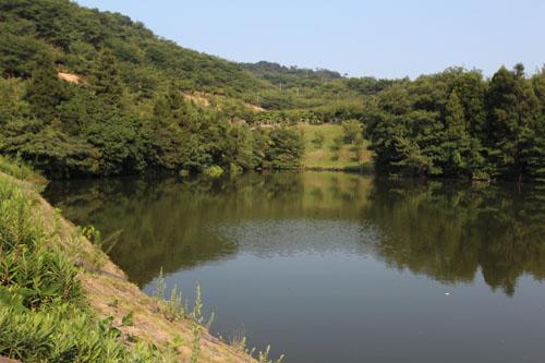 岡山の野池でバス釣り