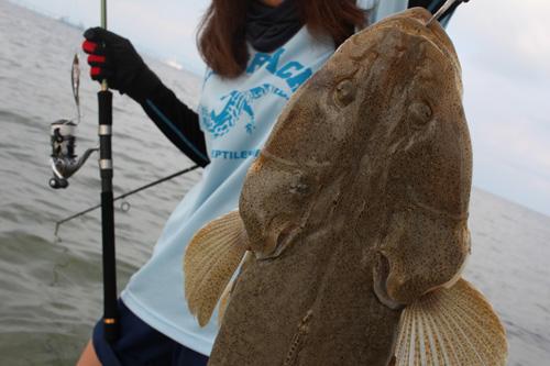沖縄でコチ釣り