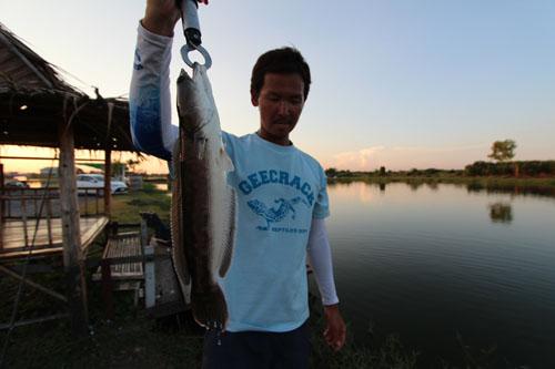 Pilot111 Fishing Park