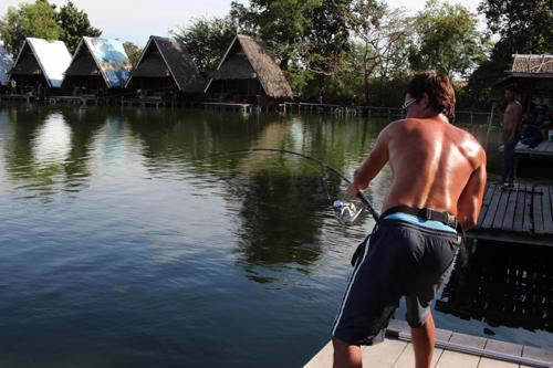メコンオオナマズ釣り