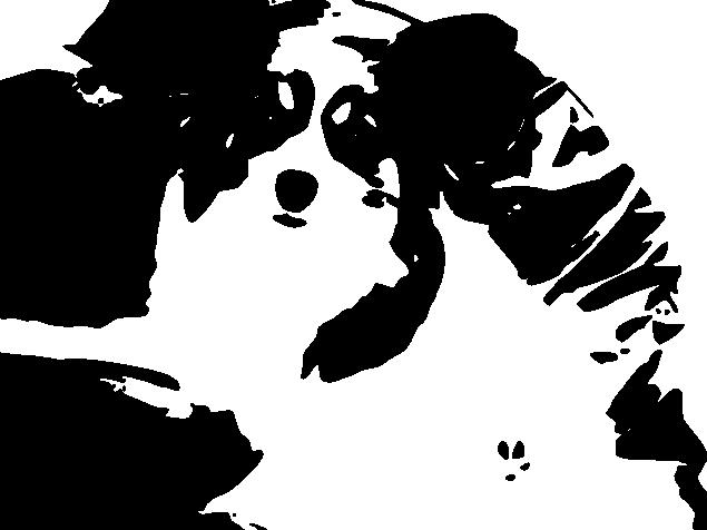 パピヨンのイラスト