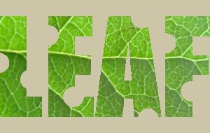 葉っぱの画像を使った文字