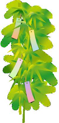 七夕の笹の葉と短冊のイラスト
